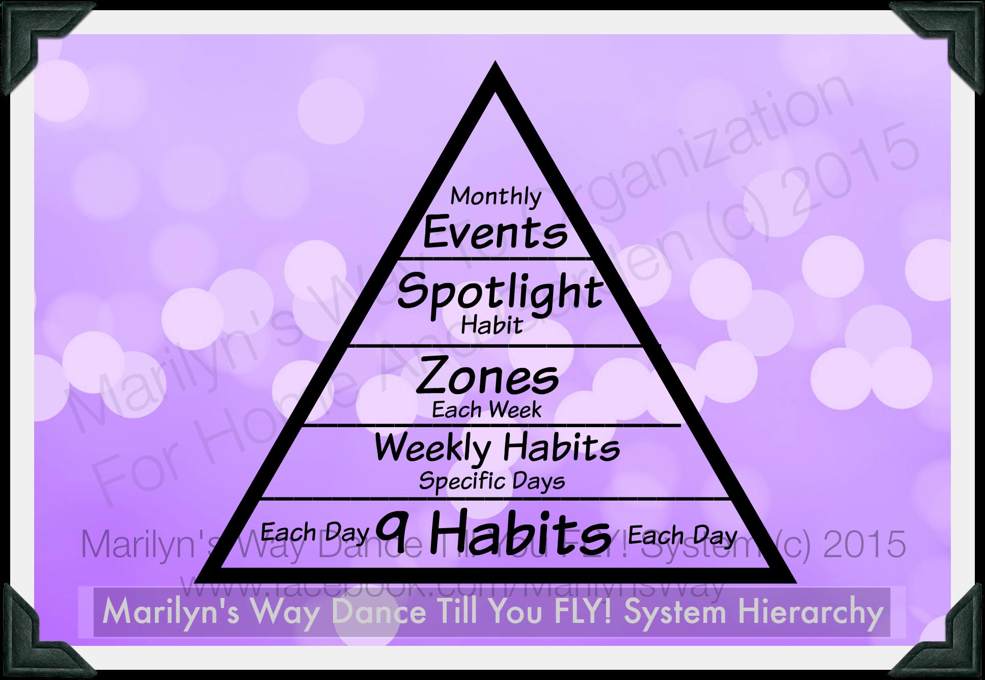 Hierarchyofdtyfsystemmw