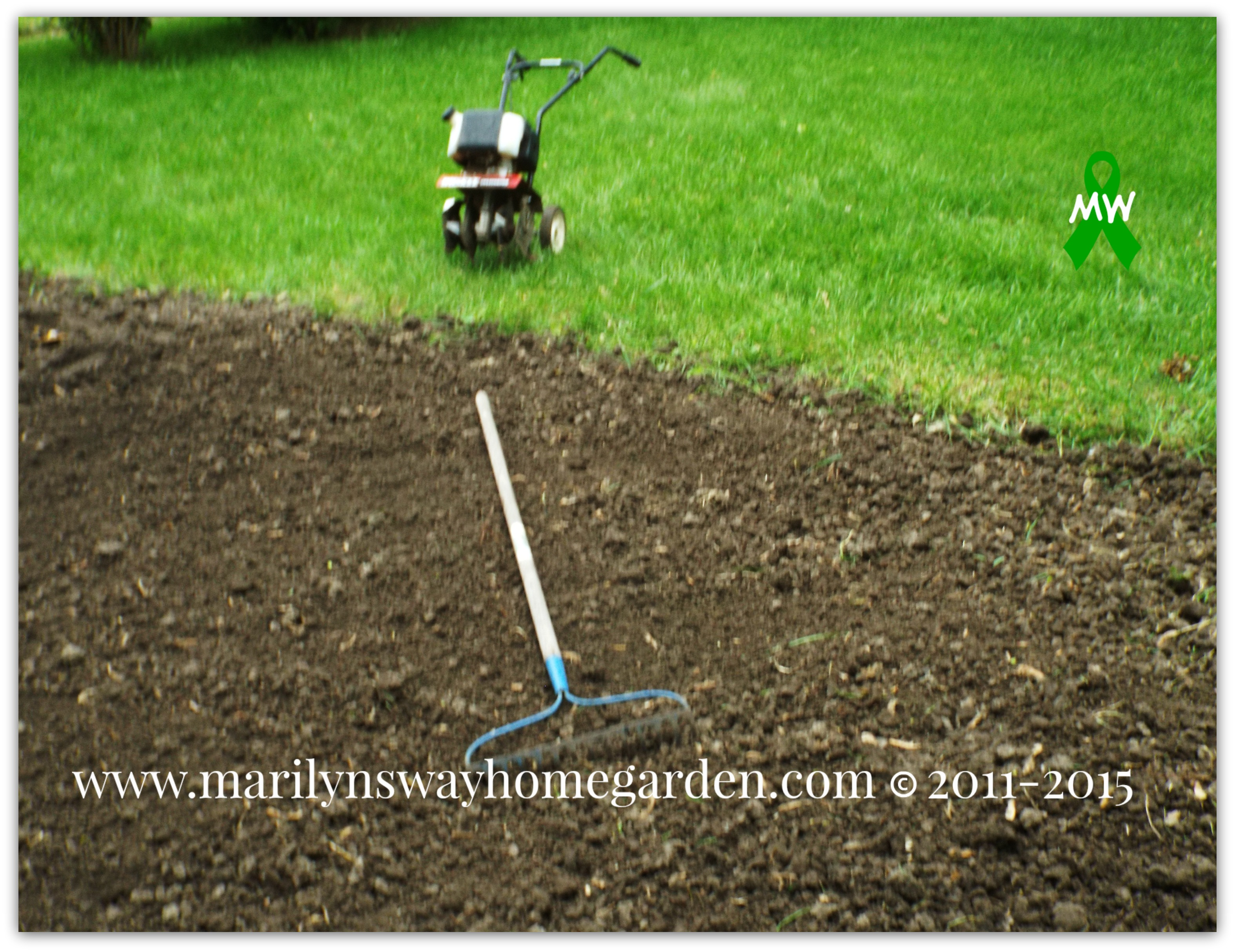 Planting Tomatoes & Peppers Amended With Coffee Grounds, Crushed ...