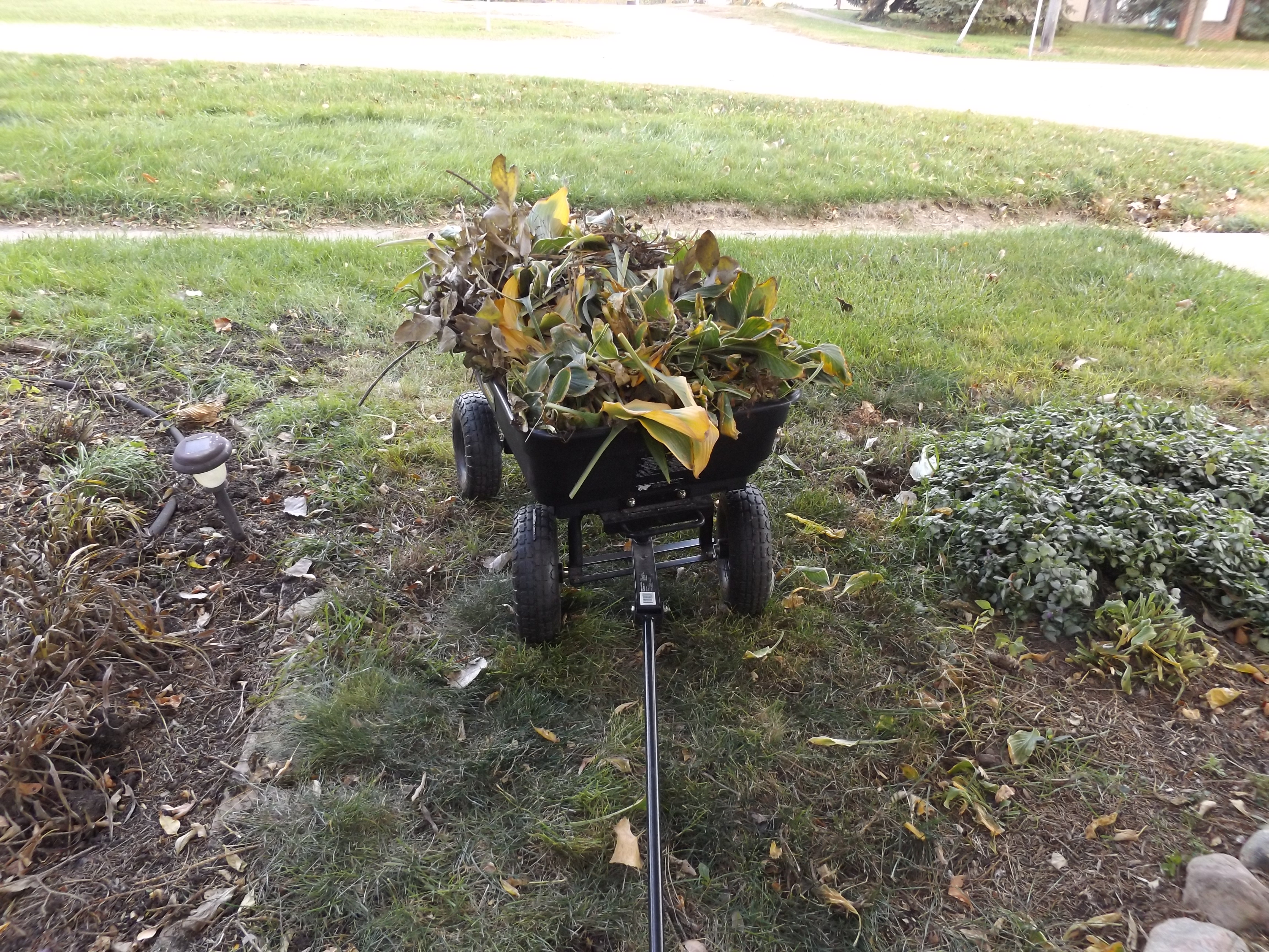 Instant Fall Garden : Garden tools for easy clean up marilyn k foster